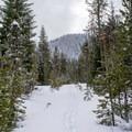 Little Nash Snow Trail. - Little Nash Snow Trail