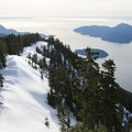 The ridge below Mount Harvey's summit is one of the nicest on the North Shore.- Mount Harvey