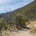 Junction at the wilderness area boundary.- Cooper Loop
