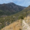 Heading down into Miller Canyon.- Cooper Loop