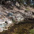Lower Miller Canyon Trail follows the creek.- Cooper Loop