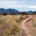 Easy trails in Garden Canyon Park.- Garden-Brown Canyon Loop