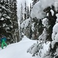 Heading up the skin track from Connaught Creek.- Rogers Pass: Grizzly Shoulder