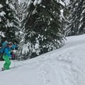 More skin track.- Rogers Pass: Grizzly Shoulder