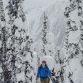 Heading higher onto Grizzly Shoulder. - Rogers Pass: Grizzly Shoulder