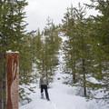 Little Nash Snow Trail.- Little Nash Snow Trail