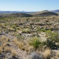 You must cross a few miles of open desert and dry washes.- Devils Den