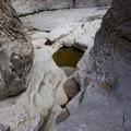 Water-worn rock in Fern Canyon.- Santa Elena Canyon of the Rio Grande
