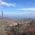 Views from the AT on the Grayson Highlands Loop.- Grayson Highlands Backpacking Loop