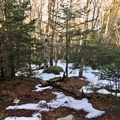 Snow can linger into the spring.- Grayson Highlands Backpacking Loop