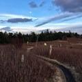 AT via moonlight.- Grayson Highlands Backpacking Loop
