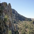 Wild terrain of the Chisos Basin.- Emory Peak via Pinnacles Trail