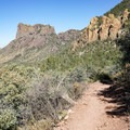 Colorful geology and diverse plant life of the desert mountains.- Emory Peak via Pinnacles Trail