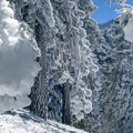 This route up Mount Baldy is a frozen wonderland in winter.- Mount Baldy via Register Ridge