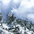Above the clouds.- Mount Baldy via Register Ridge