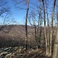 Check out the view as you catch your breath after making it up that hill.- Cat Rock Mountain via Old Misery Trail