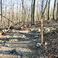 Once you reach the top of the Old Misery Trail, make a right onto Catoctin Trail to reach Cat Rock.- Cat Rock Mountain via Old Misery Trail