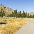 The setting for this campground is beautiful.- Salmon River Campground