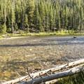 Salmon River.- Salmon River Campground