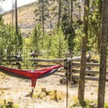 Camping along the Salmon River.- Casino Creek Campground