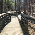 The boardwalk is a short, leisurely, beautiful stroll to Cunningham Falls. Please note, however, that this boardwalk does not connect with the boardwalk from Cunningham Falls State Park.- Cunningham Falls