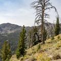 Beautiful views along the trail.- Titus Lake Trail
