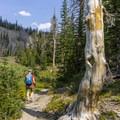 Heading back down the Titus Lake Trail.- Titus Lake Trail