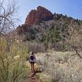 Beginning the hike into Spring Creek Canyon.- Spring Creek Canyon