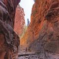 Spring Creek Canyon makes you feel so small. - Spring Creek Canyon