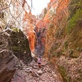Spring Creek Canyon receives much less pressure from hikers than surrounding areas.- Spring Creek Canyon