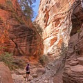 The Spring Creek Canyon walls tower above.- Spring Creek Canyon