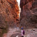 Wear sturdy footwear for this hike.- Spring Creek Canyon