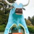 Babe the Blue Ox greets visitors near the parking lot.- Trees Of Mystery