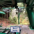 This is where you get on the Sky Trail, a tram that will take you through the forest canopy. - Trees Of Mystery