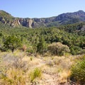The trail leading higher into the basin.- Chisos Basin Loop