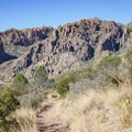 Wild geology of the Chisos Basin.- Chisos Basin Loop