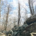 A view from the trail.- Hog Rock