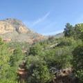 The trail to Wilson Mountain.- Wilson Mountain hike