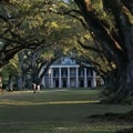 Oak Alley Plantation is famous for its 28 evenly spaced live oak trees.- Oak Alley Plantation
