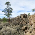 Where desert meets lava flow in Sunset Crater Volcano National Monument.- Sunset Crater Volcano National Monument