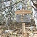 Look for the marker to Nambe Lake.- Nambe Lake Trail