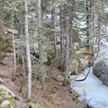 View of the frozen creek and the trail on the left.- Nambe Lake Trail
