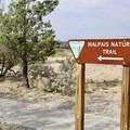 Malpais Nature Trailhead.- Malpais Nature Trail