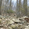 Rocky and steep trails to Chimney Rock.- Wolf Rock + Chimney Rock Loop