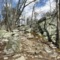 Follow the trail to the top of the rocks and be prepared to scramble.- Wolf Rock + Chimney Rock Loop