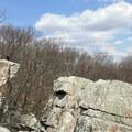 The view is wonderful.  - Wolf Rock + Chimney Rock Loop
