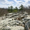 The terrain is so interesting and fun to (carefully) traverse.- Wolf Rock + Chimney Rock Loop