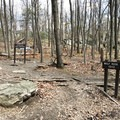 To finish the loop, make a right out of the trail and follow the orange blazes and the signs to return to the visitor center and complete your hike.- Wolf Rock + Chimney Rock Loop