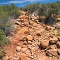 The trail isn't maintained very well.- Viejas Mountain