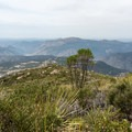 View to the northwest from the summit.- Viejas Mountain